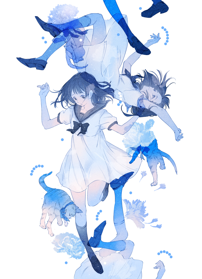 ajimita - blue carnation (56368765)